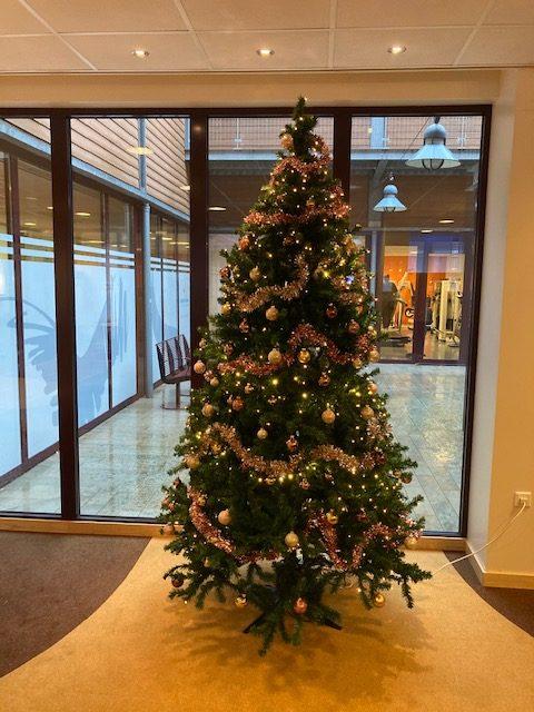 Kerst Reusel, Fysiotherapie Reusel, terugblik 2020 fysio